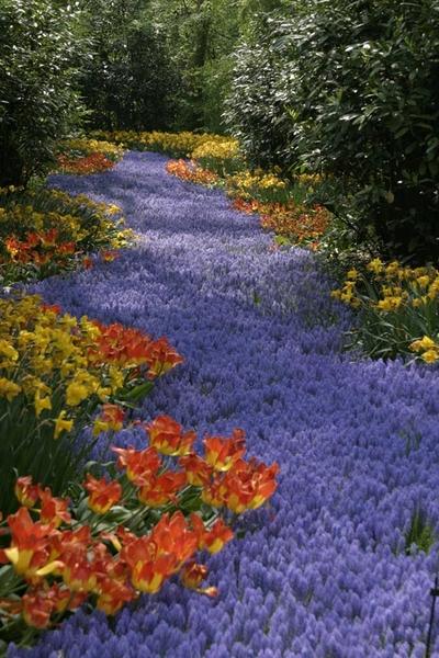 reiki-path-reiki-garden.jpg